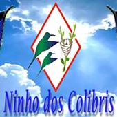 Ninhos dos Colibris