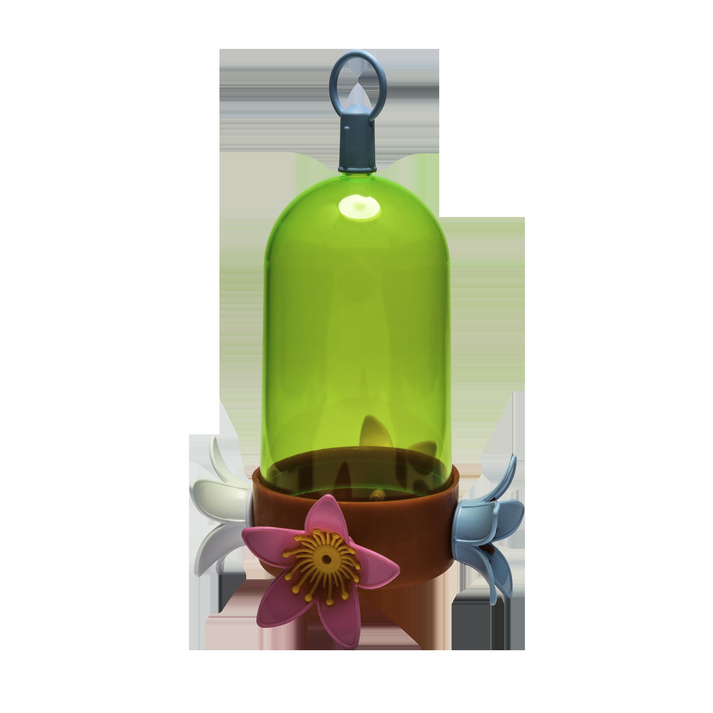 Beija Flor Ecológico Simples